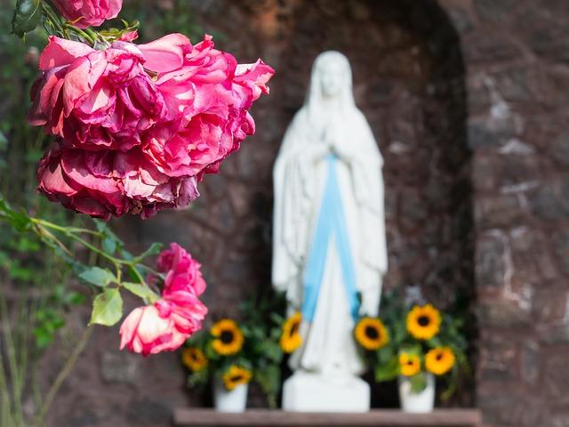 Róża, w tle figura Maryi